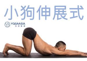 小狗伸展式 (Uttan Shishosana)
